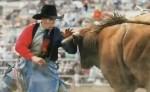 Клоуны против быков
